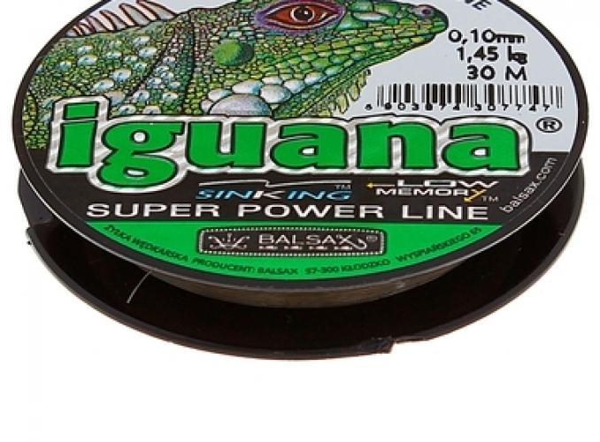 плетенка игуана